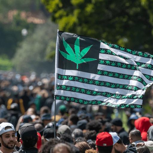 Cannabis events