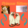 Princess Kittens Net