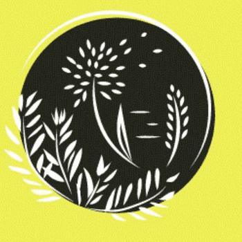 Dandelion Seed Adventures
